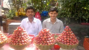 strawberry vendors